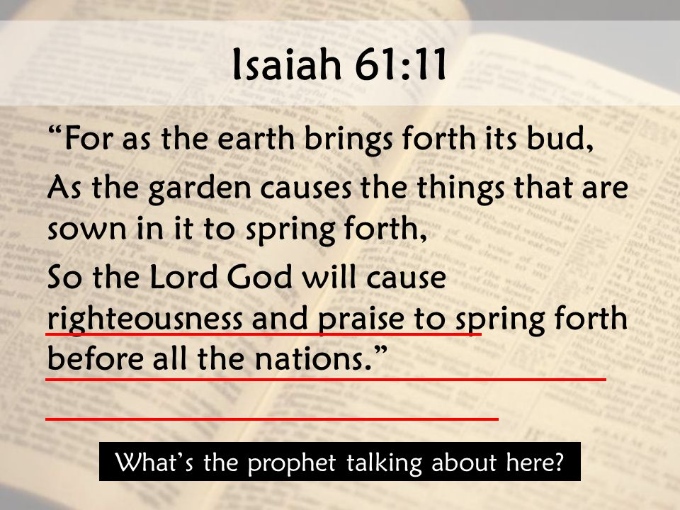"Isaiah 61:11 ""For as the earth brings forth its bud, As the garden causes the things that are sown in it to spring forth, So the Lord God will cause r"