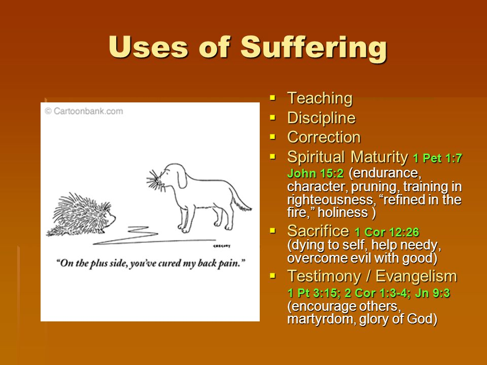 Uses of Suffering  Teaching  Discipline  Correction  Spiritual Maturity 1 Pet 1:7 John 15:2 (endurance, character, pruning, training in righteousness, refined in the fire, holiness )  Sacrifice 1 Cor 12:26 (dying to self, help needy, overcome evil with good)  Testimony / Evangelism 1 Pt 3:15; 2 Cor 1:3-4; Jn 9:3 (encourage others, martyrdom, glory of God)