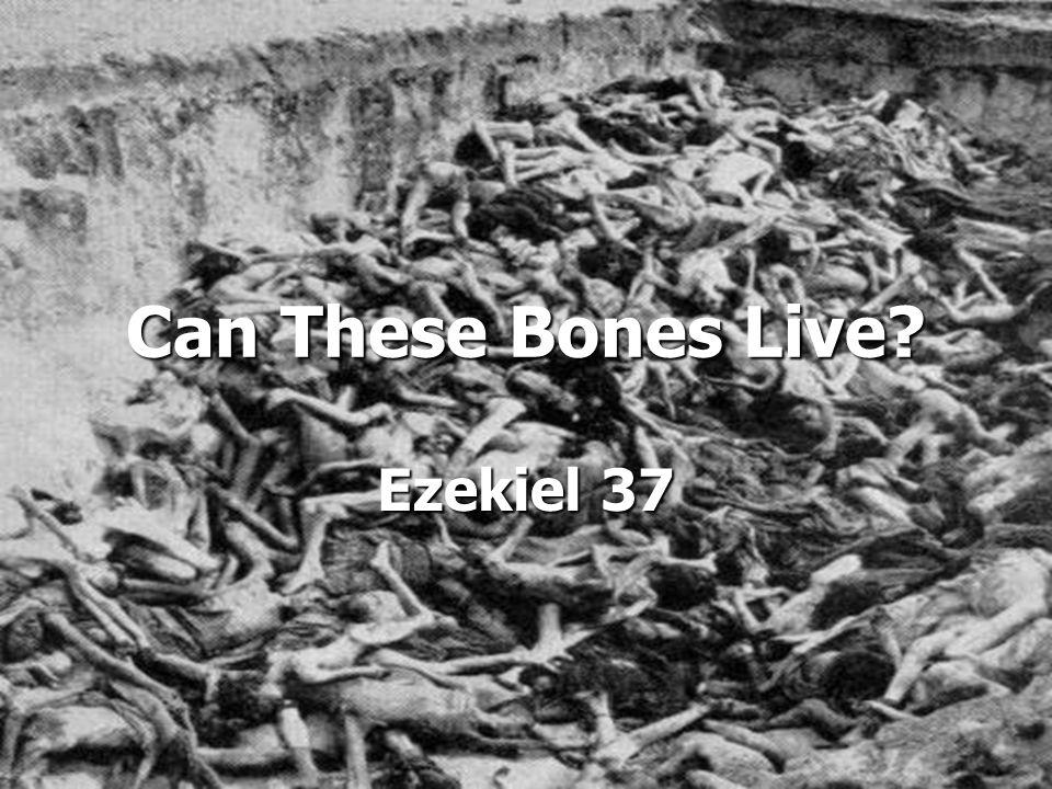 Can These Bones Live? Ezekiel 37
