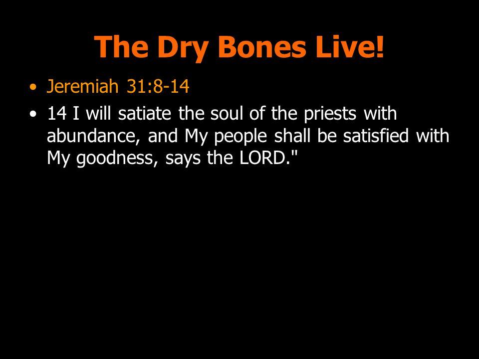 The Dry Bones Live.