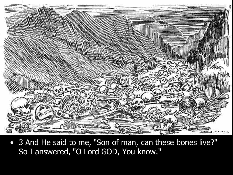 3 And He said to me, Son of man, can these bones live? So I answered, O Lord GOD, You know.