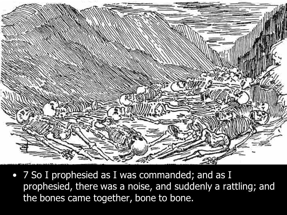 7 So I prophesied as I was commanded; and as I prophesied, there was a noise, and suddenly a rattling; and the bones came together, bone to bone.