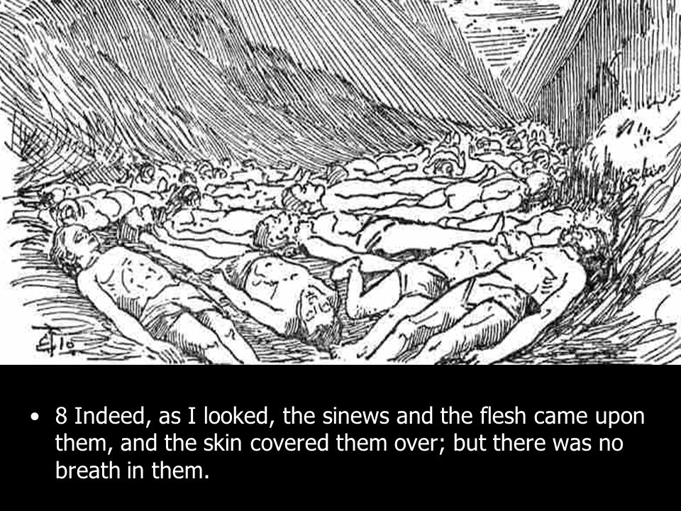 8 Indeed, as I looked, the sinews and the flesh came upon them, and the skin covered them over; but there was no breath in them.