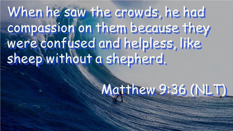 When he saw the crowds, he had compassion on them because they were confused and helpless, like sheep without a shepherd.