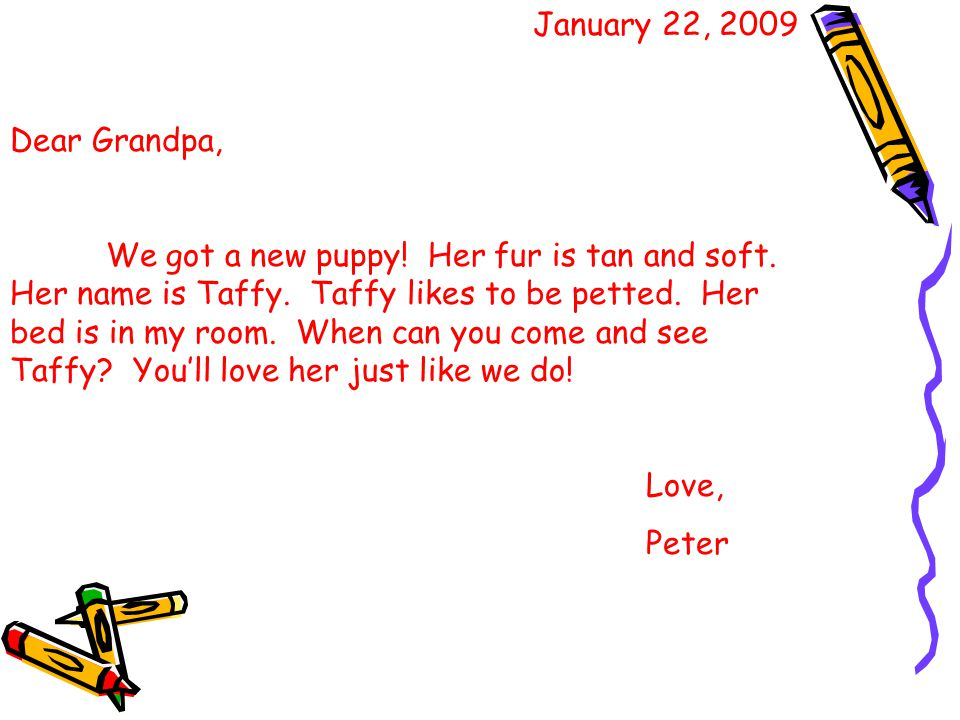 January 22, 2009 Dear Grandpa, We got a new puppy.