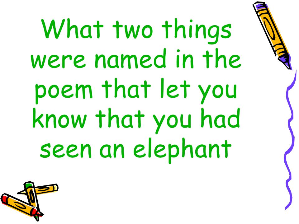 What two things were named in the poem that let you know that you had seen an elephant