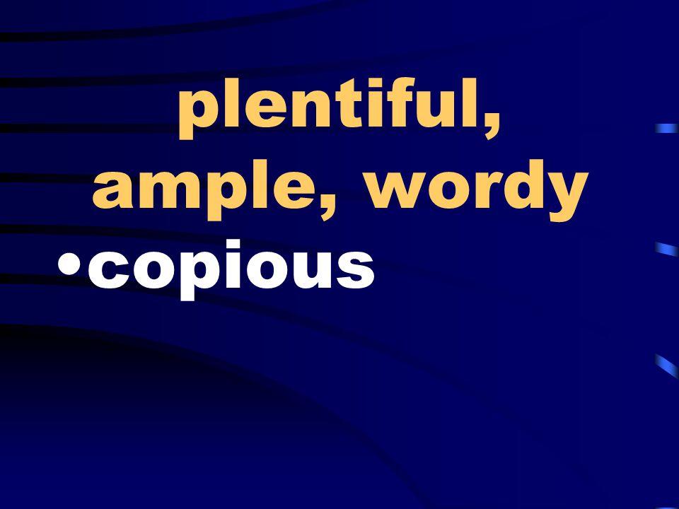 plentiful, ample, wordy copious