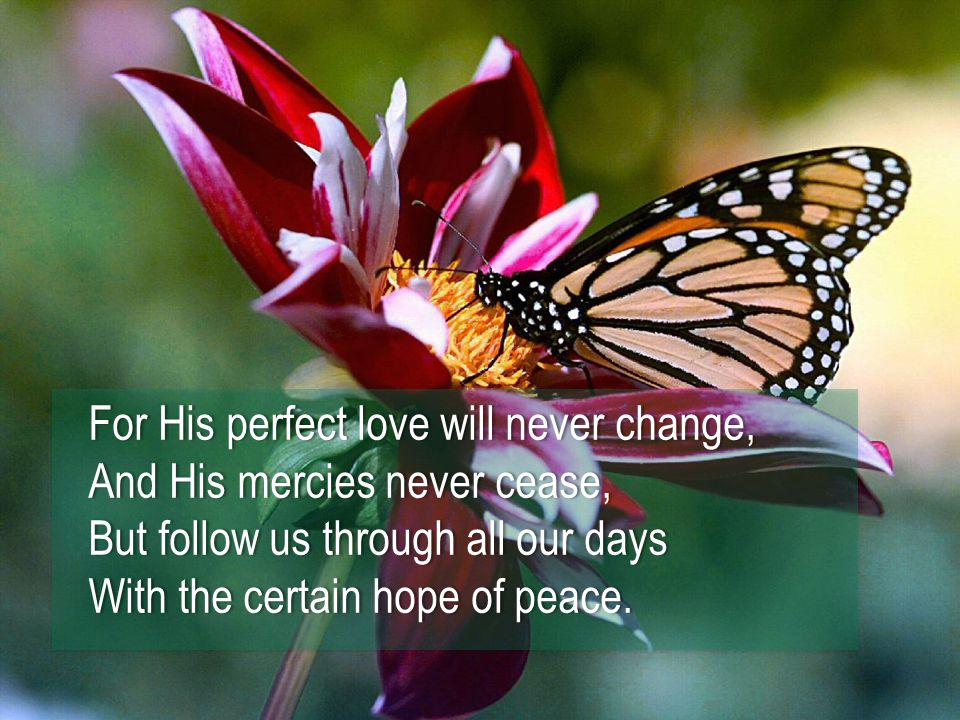 For His perfect love will never change,For His perfect love will never change, And His mercies never cease,And His mercies never cease, But follow us through all our daysBut follow us through all our days With the certain hope of peace.With the certain hope of peace.