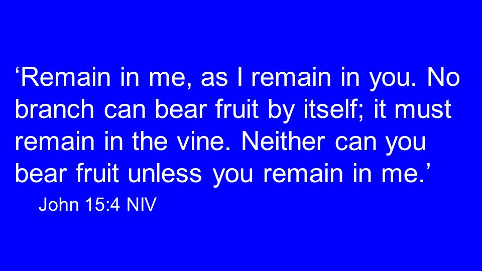 'Remain in me, as I remain in you. No branch can bear fruit by itself; it must remain in the vine.