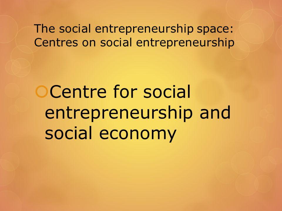 The social entrepreneurship space: Centres on social entrepreneurship  Centre for social entrepreneurship and social economy
