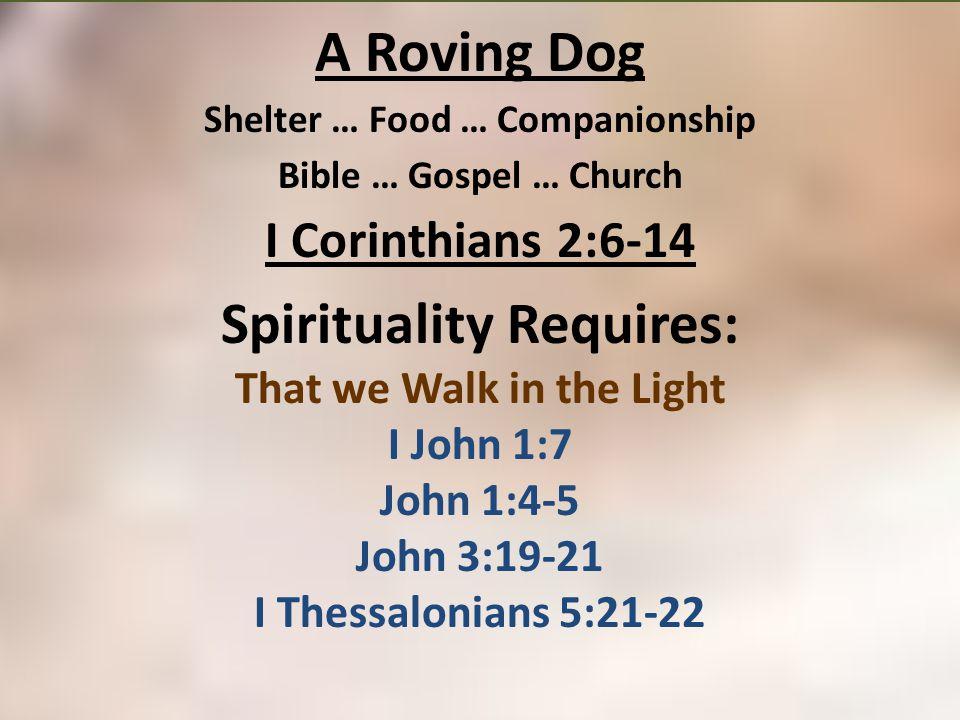 A Roving Dog Shelter … Food … Companionship Bible … Gospel … Church I Corinthians 2:6-14 Spirituality Requires: That we Walk in the Light I John 1:7 J