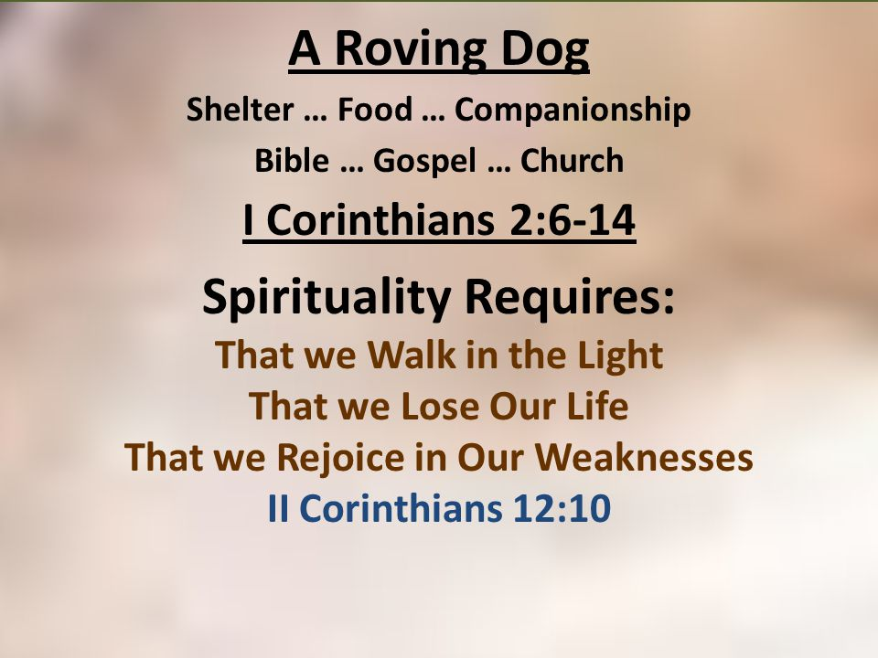 A Roving Dog Shelter … Food … Companionship Bible … Gospel … Church I Corinthians 2:6-14 Spirituality Requires: That we Walk in the Light That we Lose Our Life That we Rejoice in Our Weaknesses II Corinthians 12:10