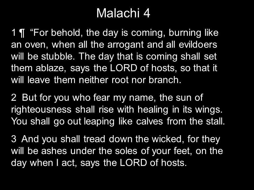 Malachi 4 1 ¶ For behold, the day is coming, burning like an oven, when all the arrogant and all evildoers will be stubble.