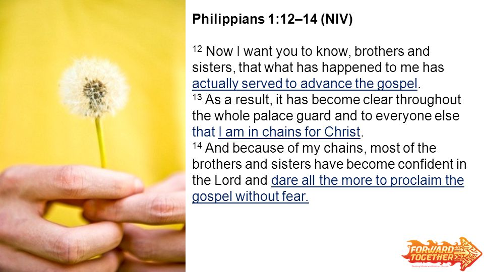 Philippians 1:12–14 (NIV) 12 Now I want you to know, brothers and sisters, that what has happened to me has actually served to advance the gospel.