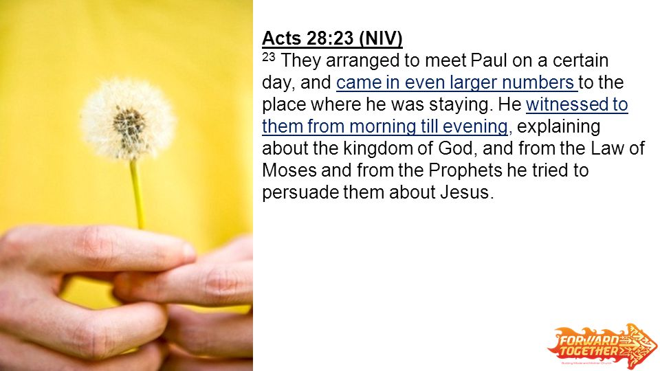 Acts 28:23 (NIV) 23 They arranged to meet Paul on a certain day, and came in even larger numbers to the place where he was staying.