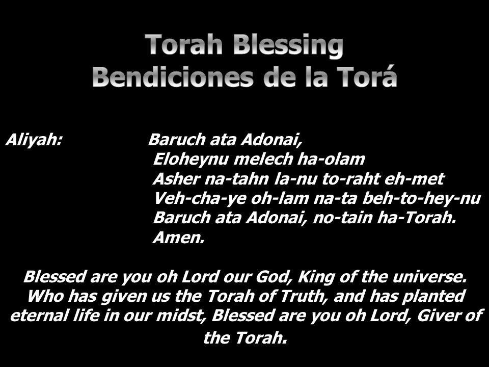 Aliyah: Baruch ata Adonai, Eloheynu melech ha-olam Asher na-tahn la-nu to-raht eh-met Veh-cha-ye oh-lam na-ta beh-to-hey-nu Baruch ata Adonai, no-tain ha-Torah.