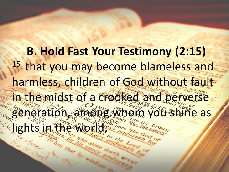 B. Hold Fast Your Testimony (2:15) 15 that you may become blameless and harmless, children of God without fault in the midst of a crooked and perverse