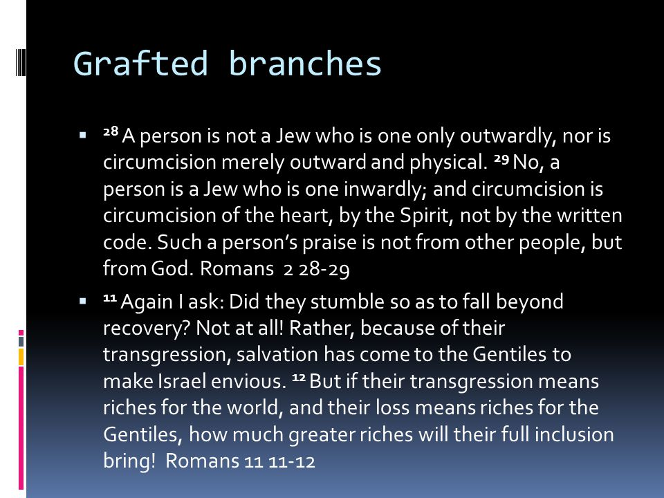 Grafted branches  28 A person is not a Jew who is one only outwardly, nor is circumcision merely outward and physical.