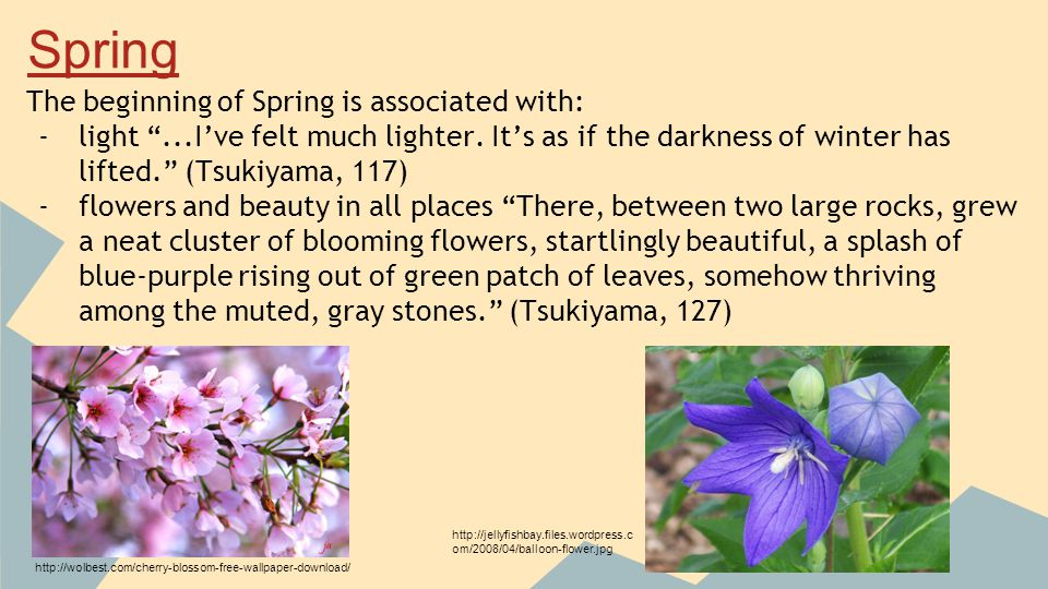 The beginning of Spring is associated with: -light ...I've felt much lighter.
