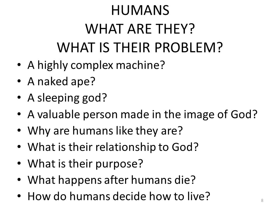 HUMANS WHAT ARE THEY. WHAT IS THEIR PROBLEM. A highly complex machine.