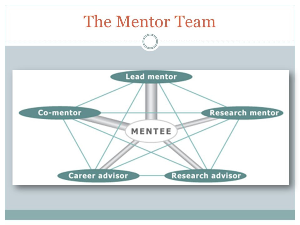 The Mentor Team