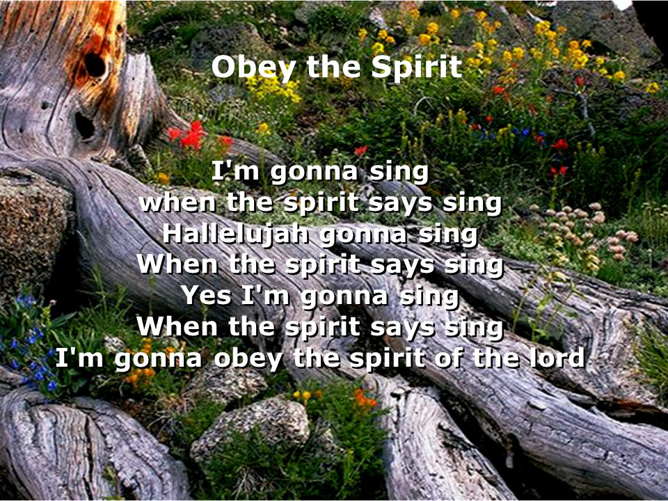 Obey the Spirit I m gonna sing when the spirit says sing Hallelujah gonna sing When the spirit says sing Yes I m gonna sing When the spirit says sing I m gonna obey the spirit of the lord