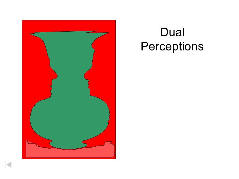 Dual Perceptions