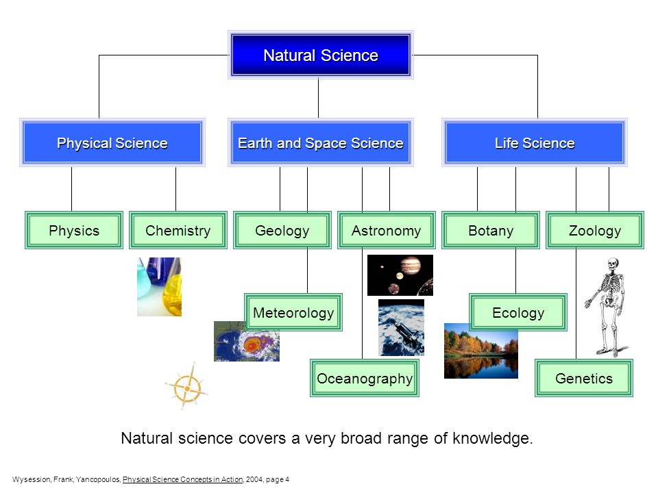 Natural Science Physical Science Earth and Space Science Life Science PhysicsChemistry GeologyAstronomyBotanyZoologyMeteorology Oceanography Ecology Genetics Natural science covers a very broad range of knowledge.