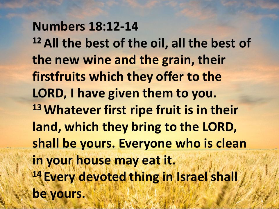 Numbers 18:12-14 12 All the best of the oil, all the best of the new wine and the grain, their firstfruits which they offer to the LORD, I have given them to you.