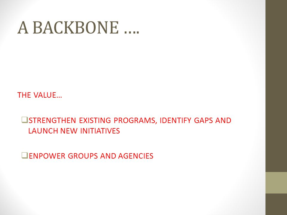 A BACKBONE …. THE VALUE…  STRENGTHEN EXISTING PROGRAMS, IDENTIFY GAPS AND LAUNCH NEW INITIATIVES  ENPOWER GROUPS AND AGENCIES