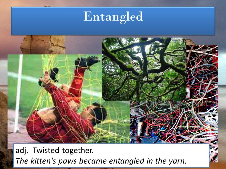 Entangled adj. Twisted together. The kitten's paws became entangled in the yarn.