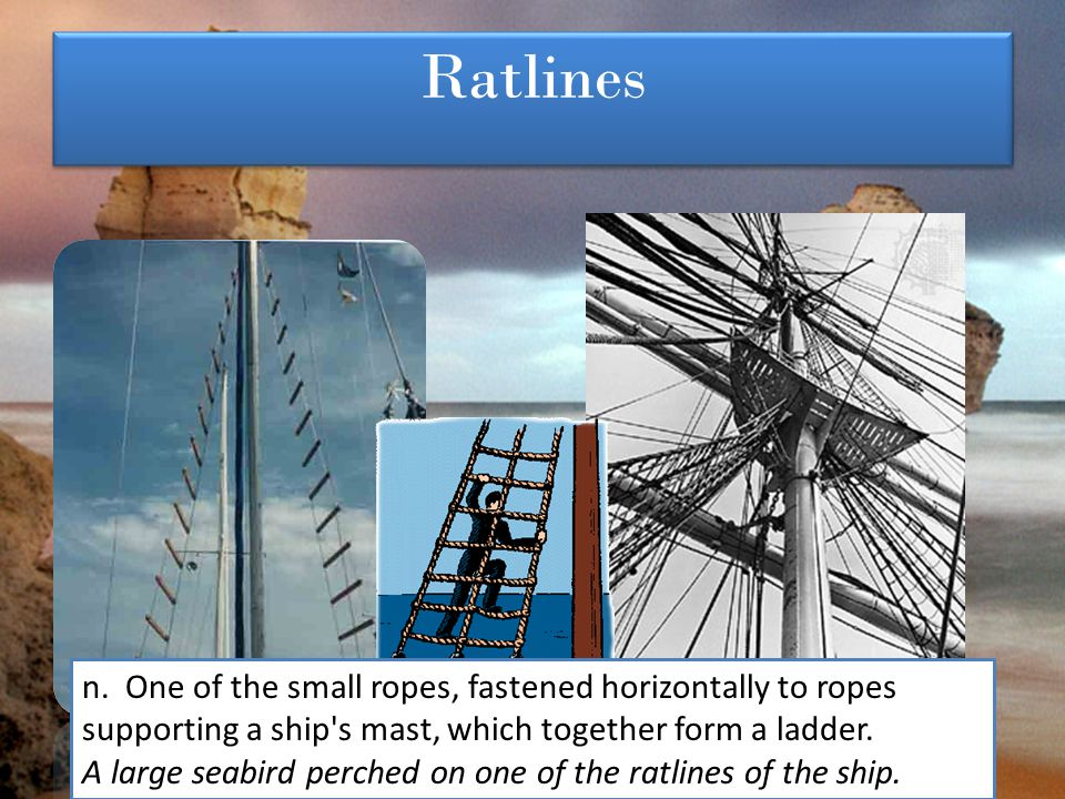Ratlines n. One of the small ropes, fastened horizontally to ropes supporting a ship's mast, which together form a ladder. A large seabird perched on