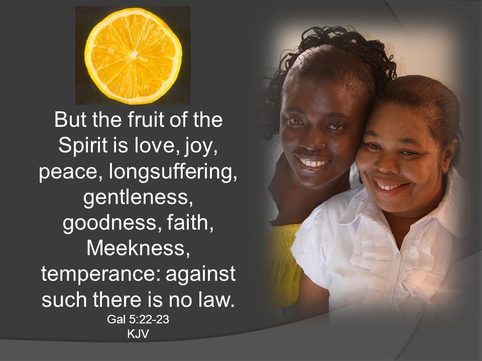 But the fruit of the Spirit is love, joy, peace, longsuffering, gentleness, goodness, faith, Meekness, temperance: against such there is no law. Gal 5