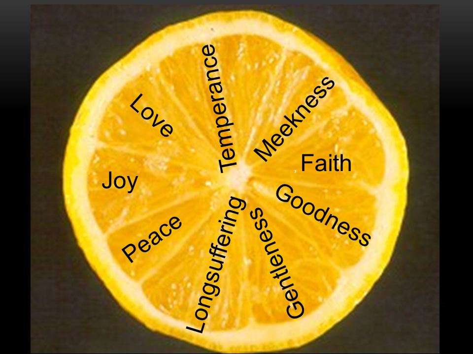 Love Joy Longsuffering Gentleness Peace Goodness, Faith Meekness Temperance
