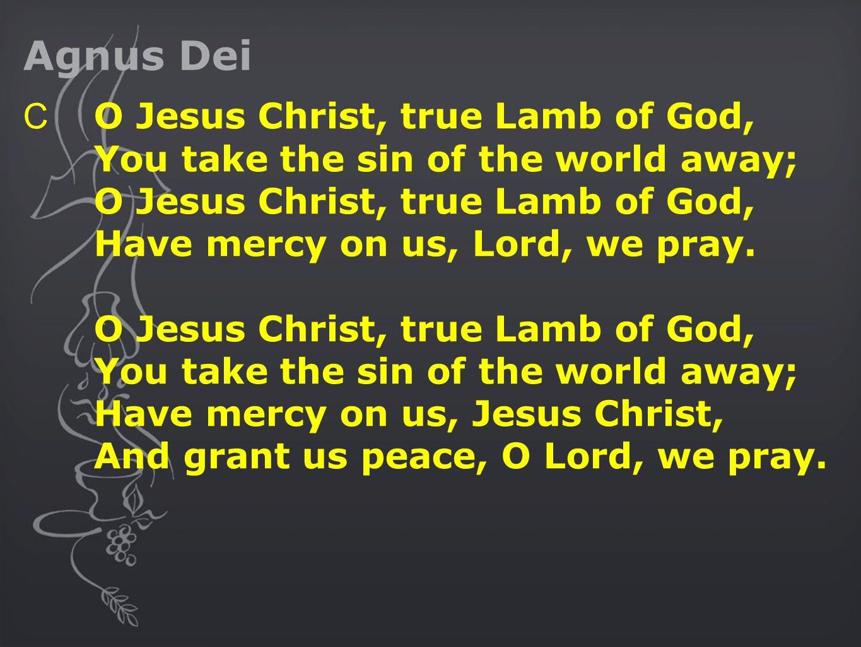 Agnus Dei C O Jesus Christ, true Lamb of God, You take the sin of the world away; O Jesus Christ, true Lamb of God, Have mercy on us, Lord, we pray.