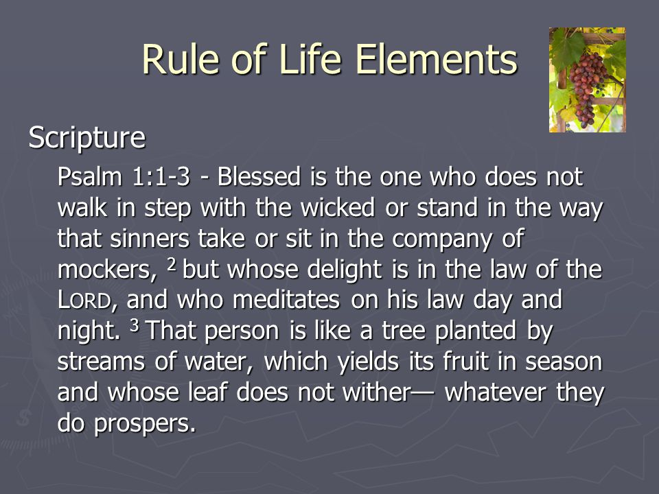 Rule of Life Elements Scripture Psalm 1:1-3 - Blessed is the one who does not walk in step with the wicked or stand in the way that sinners take or si