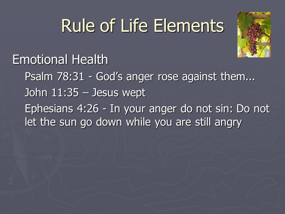Rule of Life Elements Emotional Health Psalm 78:31 - God's anger rose against them... John 11:35 – Jesus wept Ephesians 4:26 - In your anger do not si