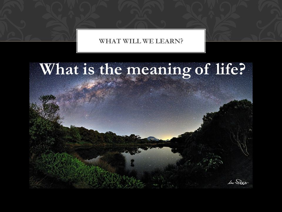 WHAT WILL WE LEARN? What is the meaning of life?