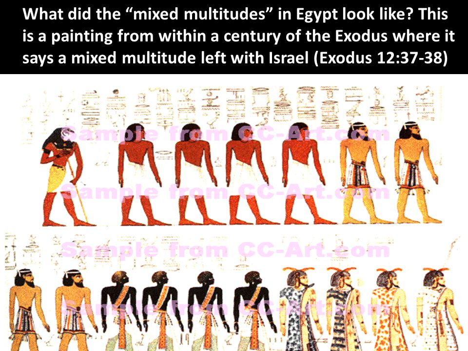 What did the mixed multitudes in Egypt look like.