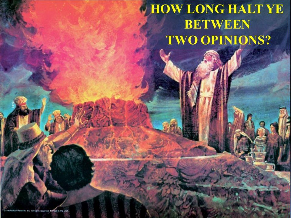 HOW LONG HALT YE BETWEEN TWO OPINIONS?