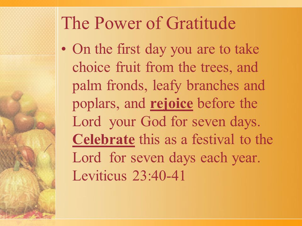 The Power of Gratitude On the first day you are to take choice fruit from the trees, and palm fronds, leafy branches and poplars, and rejoice before the Lord your God for seven days.