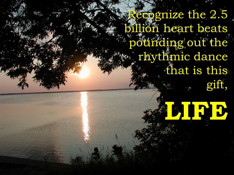 Recognize the 2.5 billion heart beats pounding out the rhythmic dance that is this gift, LIFE