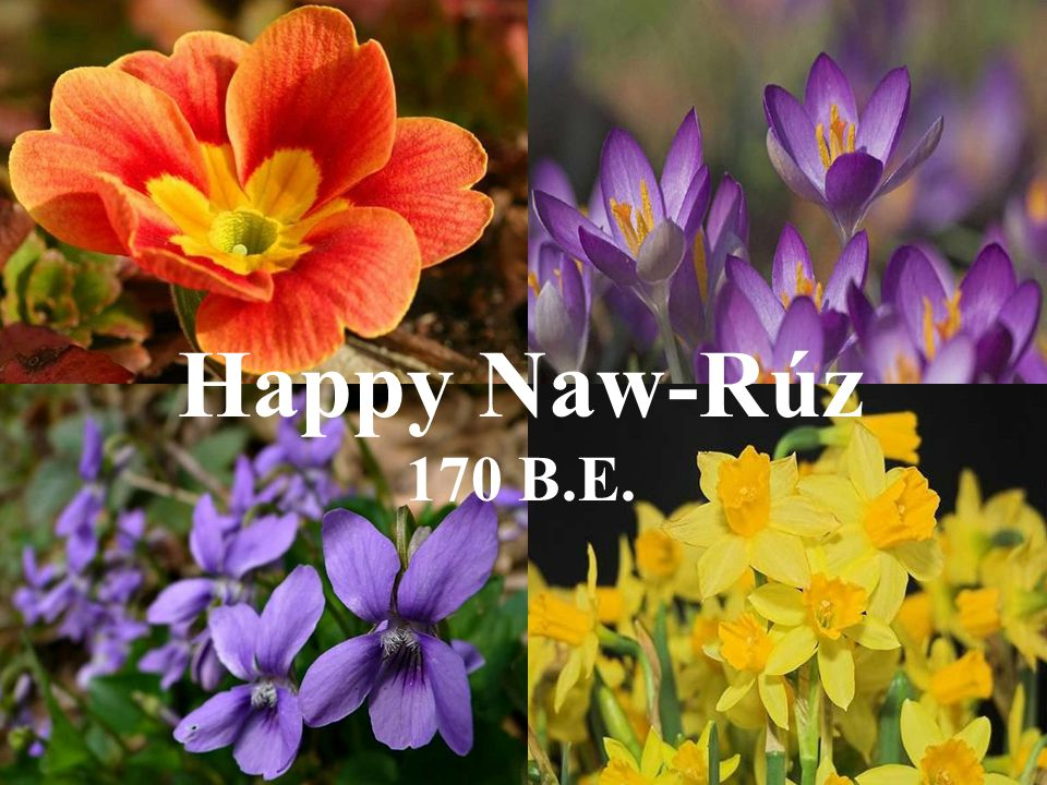 Happy Naw-Rúz 170 B.E.