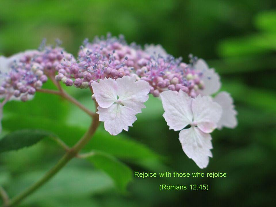 Rejoice with those who rejoice (Romans 12:45)