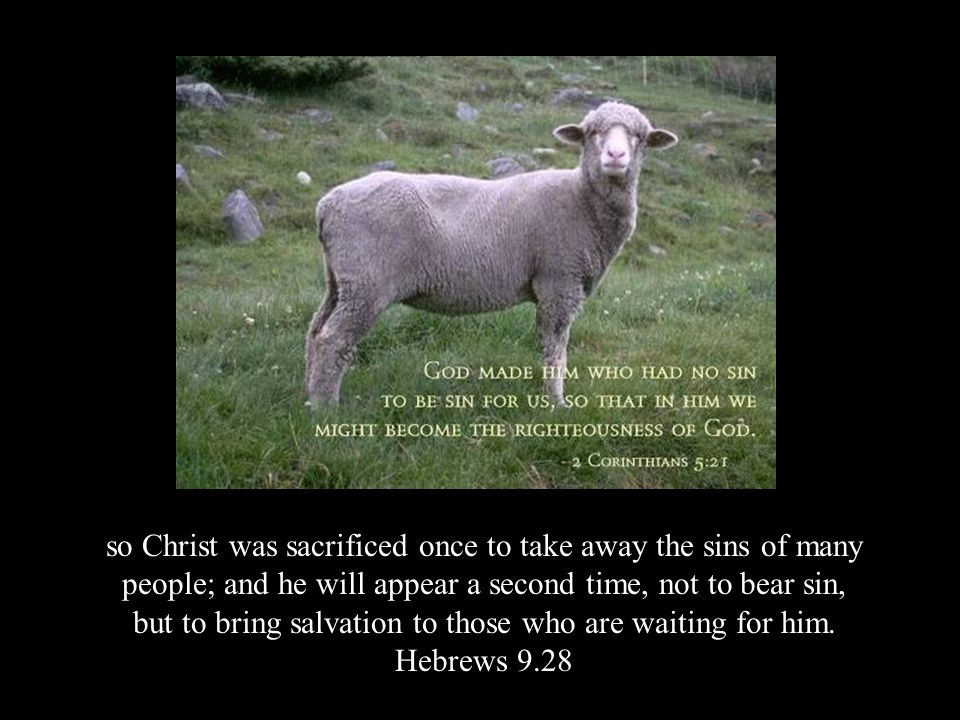 so Christ was sacrificed once to take away the sins of many people; and he will appear a second time, not to bear sin, but to bring salvation to those who are waiting for him.