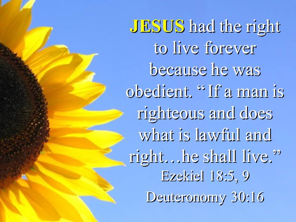 JESUS had the right to live forever because he was obedient.