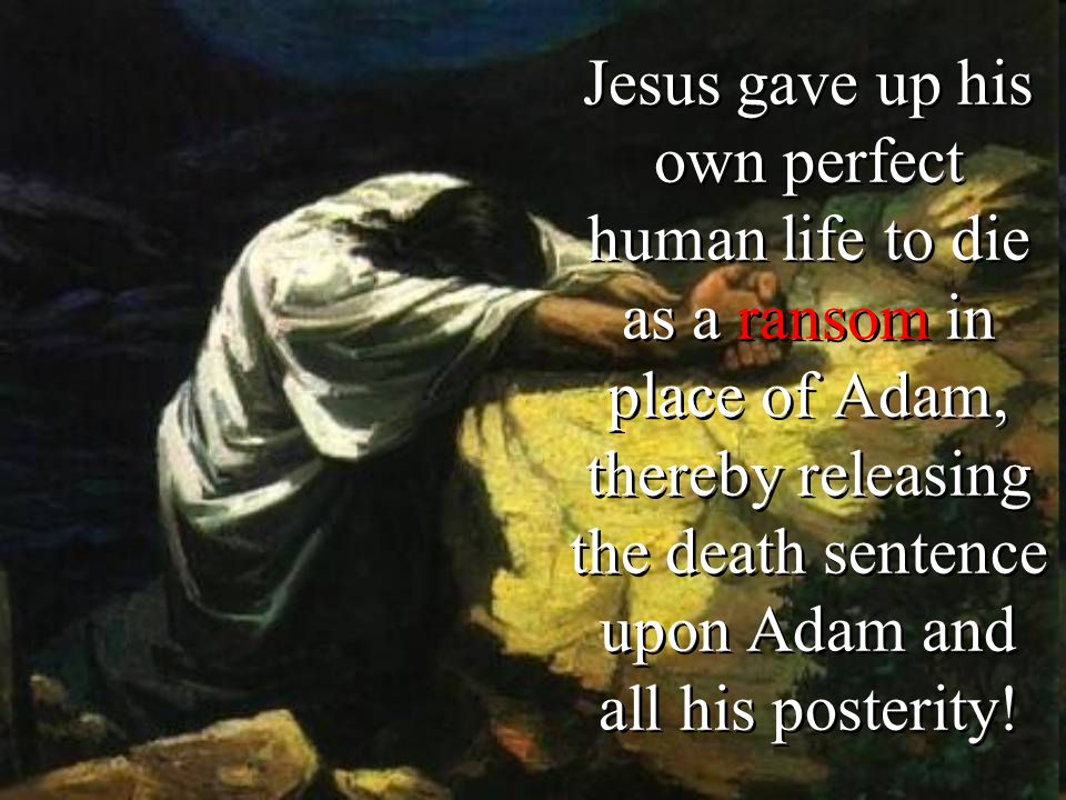 Jesus gave up his own perfect human life to die as a ransom in place of Adam, thereby releasing the death sentence upon Adam and all his posterity!