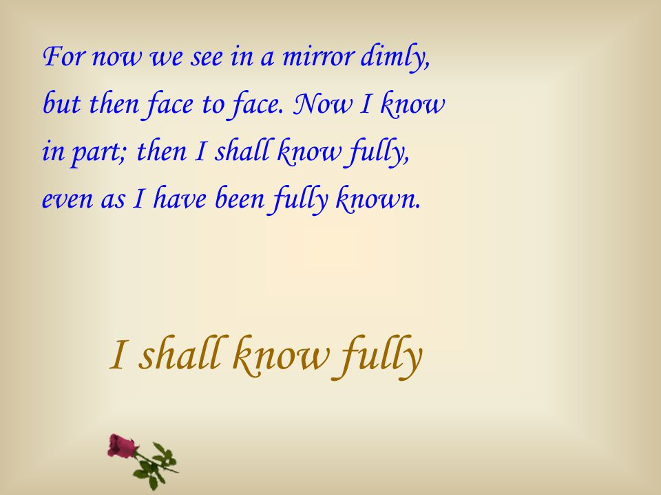For now we see in a mirror dimly, but then face to face.