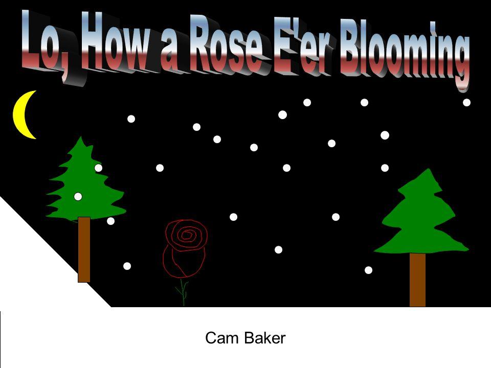 Cam Baker Cameron Baker