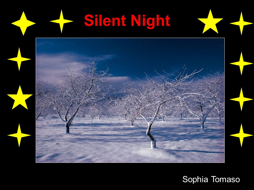 Silent Night Sophia Tomaso
